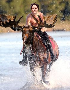 """Newly-elected Canadian Prime Minster Justin Trudeau demonstrated his stance against  """"Bully Vladimir Putin"""" via shirtless photo shoot riding moose."""