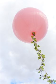 Decorate balloons by twisting flowers round the string and tie to the backs of the chairs. #designsponge #dssummerparty