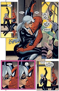 Black Cat and Spider-Man in Spider-Man/Black Cat: The Evil That Men Do