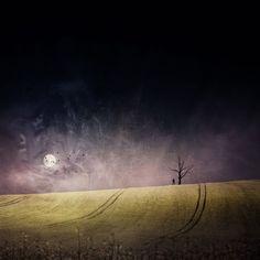 'Mondsüchtig' von Christine  Ellger