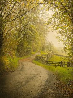 Country lane (Lake District, England) [unable to determine photographer]