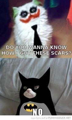 Grumpy Cat - Batman