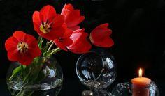 Схема вышивки «Натюрморт с тюльпанами» - Вышивка крестом