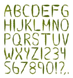 One of the best ways to have fun with fonts is to grow them. Literally. A pokey handmade font the Cactus Font (or CACTUS Handmade Typeface) by Samuel Tekunoff USA is a plant typography masterpiece: this is a 100% natural typeface made from real cactuses.  Browse download and buy more unique fancy fonts at #handmadefont View our web site address in bio.  The unique font looks prickly but in fact it is the most touchable and friendly alphabet for a design project a strong and enduring fancy…
