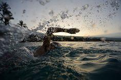 Craig Alexander startet mit kraftvollen Zügen ins Training Ironman Triathlon, Craig Alexander, Open Water Swimming, Bike Run, World Of Sports, Training, Lifestyle, Bicycling, Swimming