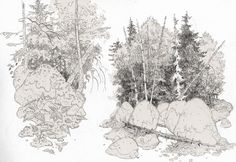 http://guldentusks.tumblr.com/post/149752109832/sooooo-many-trees-right-now