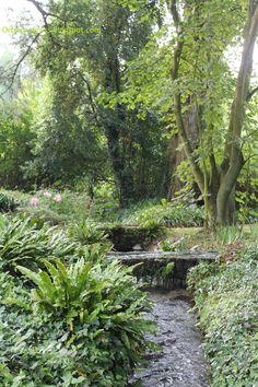 Giardino di Ninfa - canale di irrigazione