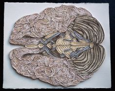 We're absolutely blown away by the work of Sarah Yakawonis, a Maine-based artist who uses a technique known as quilling to create intricate anatomical models like the ones you see here. The meticulously positioned strips of coiled paper look so much like the folds of a brain, or the sinewy striations of human muscle, I actually felt a bit queasy looking through examples of her work during lunch.
