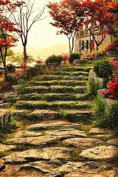 bluepueblo:    Stone Pathway, Bomunho Lake, South Korea  photo via ellenzee