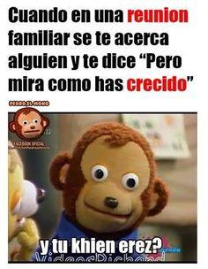 Blackpink Memes, Cat Memes, Jokes, Art Quotes Funny, Funny Spanish Memes, Cute Hamsters, Marvel Memes, Wtf Funny, Funny Pins