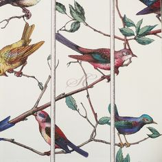 This wallpaper would look so beautiful in my room. It's Fornasetti inspired called Uccelli and available from Cole and Son Wallpaper Samples, Fabric Wallpaper, Fornasetti Wallpaper, Piero Fornasetti, Cole And Son Wallpaper, Stunning Wallpapers, Inspirational Wallpapers, Modern Wallpaper, Bird Feathers
