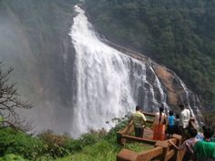 #UnchalliFalls of #Karnataka is one of the most #beautiful picturesque #waterfalls in #India. Unchalli Falls is a perfect spot for those who want to #explore the nature's beauty. The waterfall is surrounded by natural vegetation from all sides to preserve its beauty. #awesome #adventure #fun #trip #traveling #karnatakatourism #incredibleindia #nature