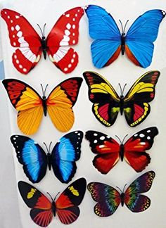 Real Butterfly Magnets Wingspan, Very Colourful Real Looking Butterflies Mixed Variation Butterfly Face Paint, Butterfly Drawing, Butterfly Pictures, Butterfly Painting, Blue Butterfly, Beautiful Butterflies, Beautiful Birds, Garden Angels, Butterfly Pattern