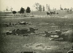 Confederate horses lay dead and artillery caissons destroyed on Antietam battlefield