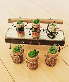 #コルク #多肉植物 #多肉寄せ植え #多肉ちゃん #コルクアート #サボテン #ワイン #スパークリングワイン #カメラ好き #セダム #DIY