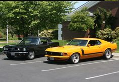 mustangs, I'm obsessed with the older ones! :3