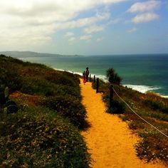 If you have an hour to spare around San Diego, take this glorious hike at Torrey Pines. Discovered by Jason Karas at Torrey Pines State Beach, San Diego, California