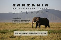 Win an African Safar