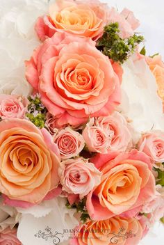 Coral roses, pale pink spray roses and white hydrangea.