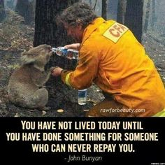 A firefighter rescues a koala.Here he is quenching the thirst of the koala during the rescue operation of the devastating Black Saturday bushfires that burned across Victoria, Australia, in Black Saturday, Black Friday, Powerful Pictures, Inspiring Pictures, Inspirational Photos, Amor Animal, Faith In Humanity Restored, In This World, Make Me Smile