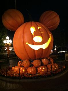 Halloween @ Disneyland Disneyland Halloween, Pumpkin Carving, Wonders Of The World, Happiness, Earth, Fun, Bonheur, Pumpkin Carvings, Being Happy