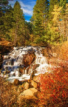 Autumn Cascades In The Sierra, by Lynn Bauer