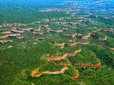 Serra Vermelha National Park - Piauí - Brazil
