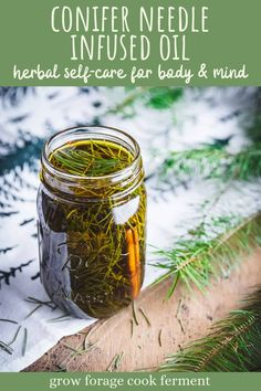 Conifer Infused Oil for Body & Mind: with Pine, Spruce, or Fir Needles