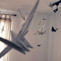 Parachutes - Paper Birds by Teniente PIG on SoundCloud Parachutes, Paper Birds, Simple