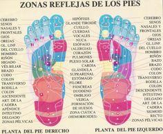 reflexología podal, reflexoterapia en los pies para relajarse y aliviar dolores físicos y emocionales  #reflexologia #reflexologiapodal #reflexoterapia #pies #reflexology   http://www.jingchishen.org/reflexoterapia-reflexologia-podal-para-relajarse-y-aliviar-dolores-fisicos-y-emocionales