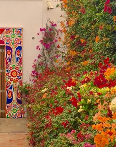 Gardens at the Larco Museum - Lima Peru