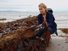 A Foraging Walk by the Sea | Take a seaweed identification walk with Prannie Rhatigan, a doctor and author of the book, The Irish Seaweed Kitchen.