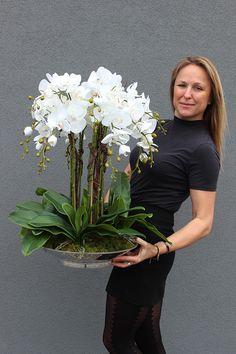 Ikebana Arrangements, Orchid Flower Arrangements, Orchid Centerpieces, Artificial Floral Arrangements, Artificial Orchids, Orchid Plants, Hotel Flowers, Silk Orchids, Flower Decorations
