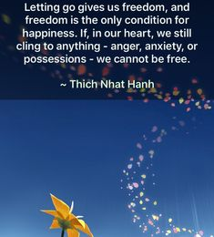 LETTING GO  gives us freedom and freedom is the only condition for happiness.  If, in our heart, we still cling to anything - anger, anxiety or possessions - we cannot be free. - Thich Nhat Hanh