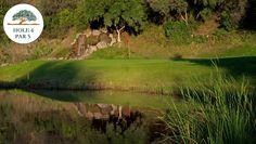 Marbella Golf & Country Club #golf #spain
