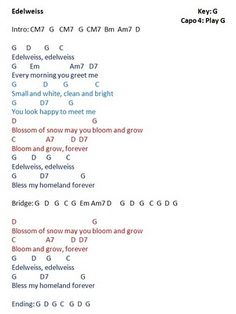edelweiss lyrics from sound of music Easy Chords Songs, Gitarrenakkorde Songs, Camp Songs, Guitar Chords For Songs, Bass Guitar Lessons, Lyrics And Chords, Ukulele Chords, Songs To Sing, Music Guitar