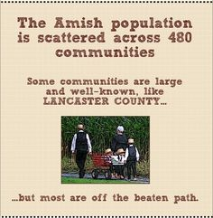 Amish live in 480 different communities.  Is there one near you?  See the full infographic at http://amishamerica.com/2014-amish-population-infographic/