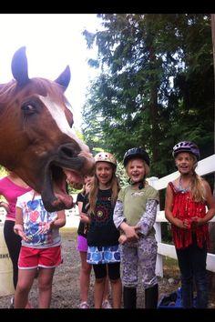 Greatest horse photobomb EVER!