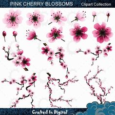 Pink Sakura/Cherry Blossom Clipart Collection image 0