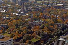 Things to do in Nashville TN  Bird's eye view by Vanderbilt University  http://www.vanderbilt.edu/nashville/essentials.php#