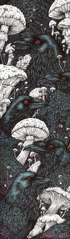 """Crows Ravens: #Ravens ~ """"Decay,"""" by Angela Rizza, at deviantART. by aileen"""