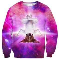 Yogi Dog Sweater – Shelfies - Outrageous Clothing