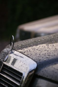 Mercedes Benz Logo - Badge - Emblem on W 124 - After the rain by ShaggyM