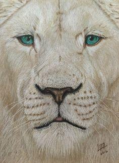white lion de arteyayiloren en Etsy, láminas decorativas, ilustraciones, ilustration, pencil drawings, lápices de colores