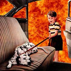 Hot dog by Steven Quinn (2013)