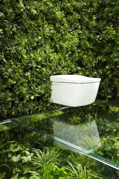 Living Wall Bathroom Awesome Living Wall for Creating Your Own Vertical Garden Bathroom Living Wall Bathroom. The easy way to add a living wall in a bathroom … Vertical gardens and residentia… Toilet Surround, Bathroom Fireplace, Garden Bathroom, Wall Hung Toilet, Pavilion Design, Natural Bathroom, Toilet Design, Amazing Bathrooms, Home Deco
