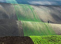 Foto: Przemyslaw Kruk