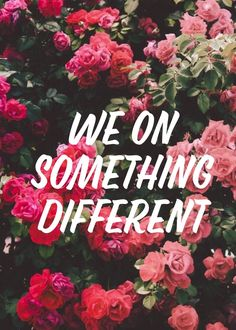 ~Something Different~ Why Don't We ~