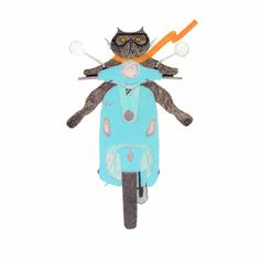 Print of Cat on an Aqua Vespa  Funny Cat on a by BlackCatStudioArt