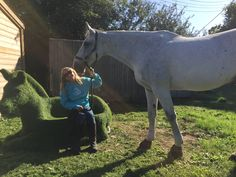 From Clare, Lynch | The Jacksons BIG Equestrian Picture Competition #horse #equestrian